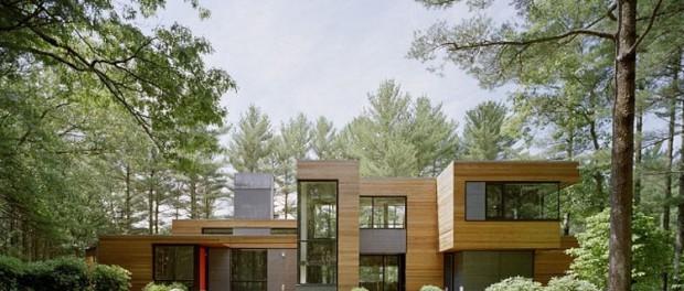 Maison design au milieu de la forêt