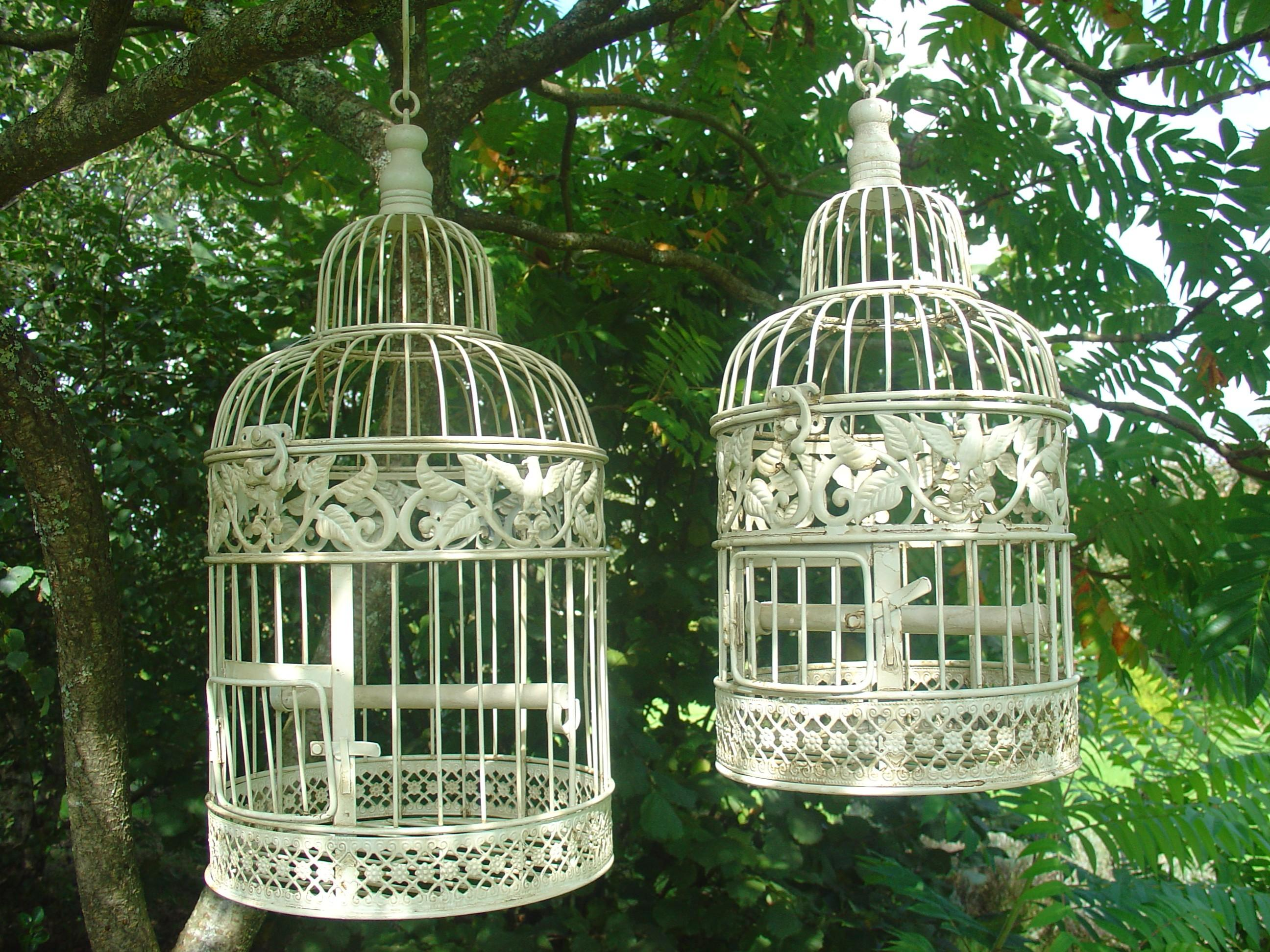 Cages oiseau d coratives deco de salon for Deco jardin oiseau